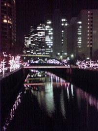 目黒川の夜景!