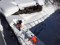 今冬初の雪堀り