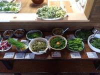 まんまの山菜パーティー