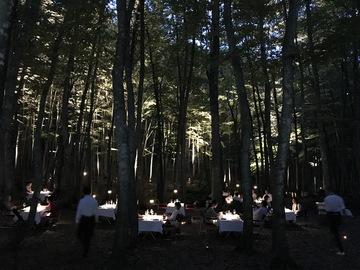 松之山ダイニングin美人林
