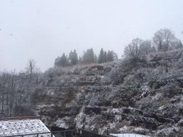 初雪そして・・
