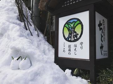 雪うさぎのひなたぼっこ
