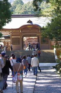 彌彦神社桜苑
