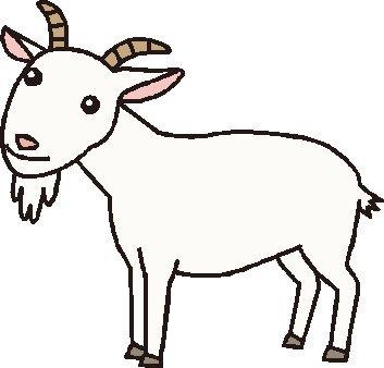 盲目の雌ヤギに常に寄り添うけなげなヤギ