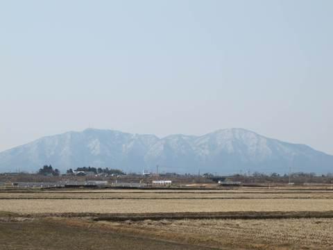 春待つ弥彦山