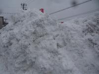大雪です。埋まっています(笑)