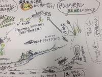 ガイド付きホタル鑑賞ナイトツアー
