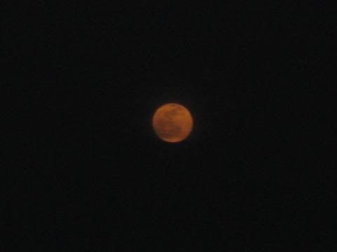 昨夜は満月