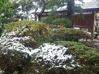 初雪 ‐ 12月8日(土) ‐
