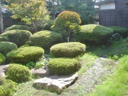 庭の玉砂利敷き