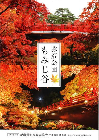【弥彦菊まつり 2017】 開催のお知らせ