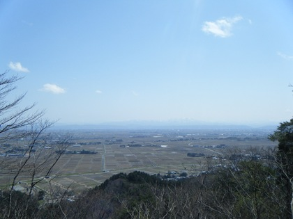 カタクリと天神山城址を訪ねる旅