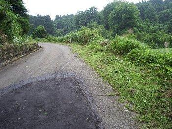 市道の草刈