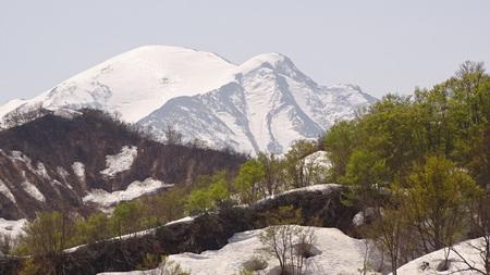 駒ケ岳と新緑