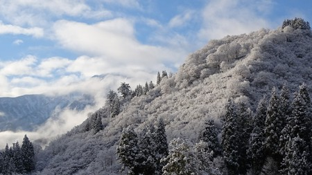 うっすら降った雪