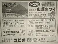 5月20日は、大湯温泉山菜まつりです!