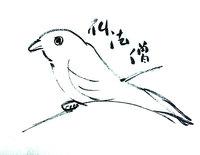第60回松之山大探鳥会