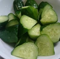 夏野菜が出始めました!