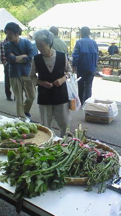 山菜まつり