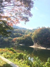 鷹ノ巣山の紅葉
