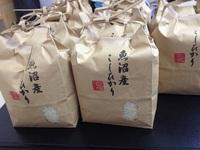 堀井米店 おむすび屋さんになる。