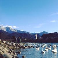 白鳥の郷公苑 規制解除
