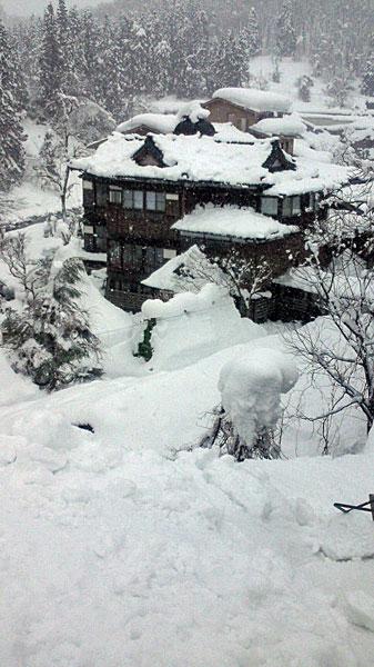 嵐渓荘 屋根