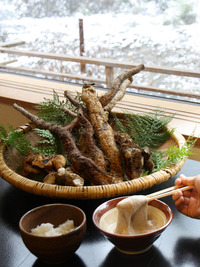 冬の滋味『自然薯』