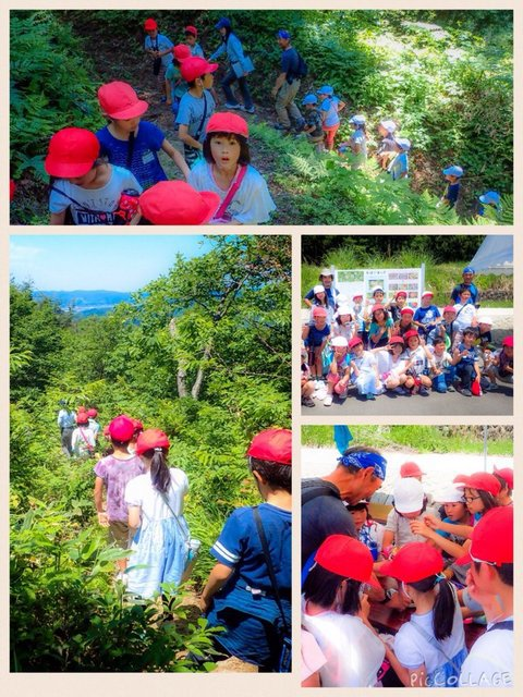 ヒメサユリハイキング Himesayuri Hiking