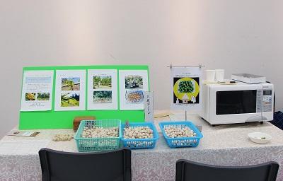 農産物展示会・初の参加