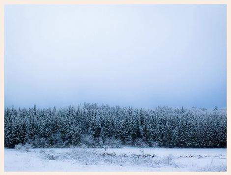 今日も雪だよ snow, today