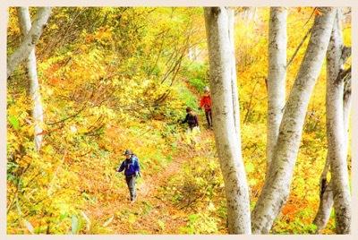 楽しい写真山行 fun Photo Hiking
