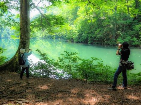 雨生池グリーン その2