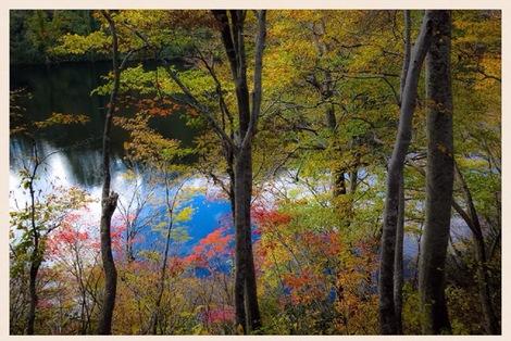 錦繍の山上湖