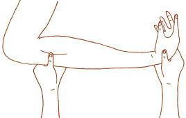 上肢第四調律点